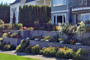 This picture shows retaining wall contractors in Seattle. The retaining walls are designer to have flowers and bushes.