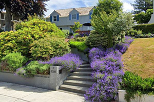 This picture shows concrete walkways and steps in Seattle. Steps go to the house up the hill with beautiful landscape around.